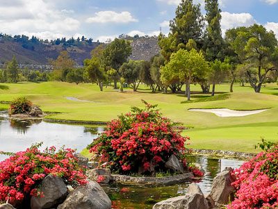 Willow Glen Golf Course at Sycuan Golf Resort