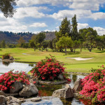 Willow Glen Golf Course Sycuan Resort San Diego