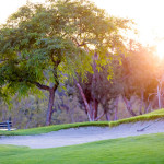 Willow Glen Course